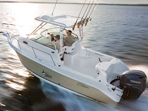 "Seaswirl Striper 2101 - ""Trevi Time"""