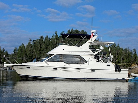 "Bayliner 4087 - ""Running Wild"""